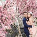 Lam Lam & Chris (婚紗城 婚紗攝影 NOVEMBER 2018)