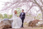 Jenny & Kelvin (日本 婚紗攝影 April 2016)